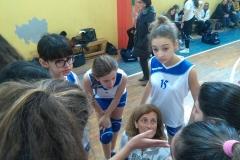 Provinciali pallavolo femminile3