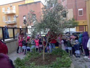 semina-albero-plesso-marullo2